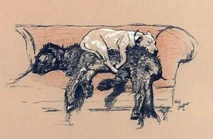 Cecil Aldin Dogs Couch Sleeping 7x4 Inch Print