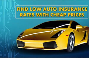 Best rates Auto and Home Insurance