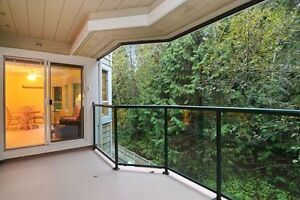 (VIRTUAL TOUR) Well Maintained! North Shore Greater Vancouver Area image 4