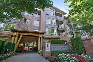 Gorgeous Penthouse At Branches!
