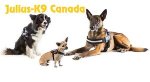 Dog Harnesses - Easy to fit and adjustable Dog harnesses Kitchener / Waterloo Kitchener Area image 3
