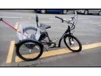 ELECTRIC TRICYCLE adult size heavy duty