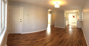 Beautiful Newly Renovated 2 Bedroom Pet Friendly