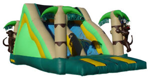 Large Commercial Slide Bouncy castle - flawless