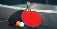 TABLE TENNIS/ PING PONG COACH/TRAINER