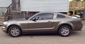 2005 V6 Mustang For Sale 214000Km