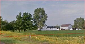 48.3 Acre Farm with Barn & 3 Horse Stalls.