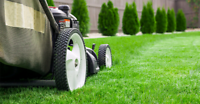 Affordable Lawn Mowing in Milton