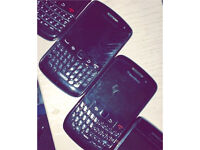 Two black berry's