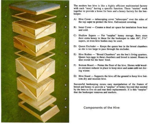 Bee Hive Kits Beekeeping Ebay