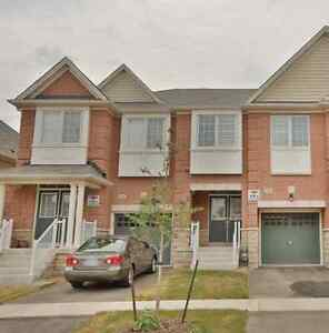 Beautiful new house available for rent