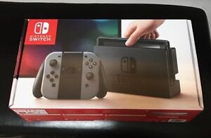 Nintendo Switch Grey Controllers