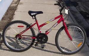 """Triumph Laser 24in. Wheel Girl's USED """"WARRANTY"""""""