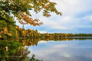 LAKE SHORE LOTS FOR SALE IN NORTH BAY