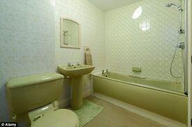 Retro Avacado Green Barthroom Suite