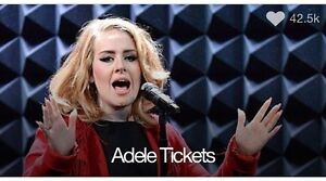 Adele Tickets Currumbin Valley Gold Coast South Preview