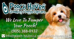 Pooch Haven Grooming & Doggie Daycare/Boarding