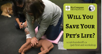 Pet First Aid Certificate Course - Oct 14 2018
