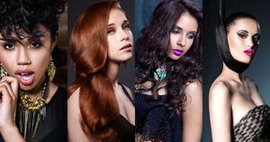 Extension de cheveux Promo ouverture 280$