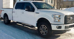 2016 Ford F-150 Fourgonnette, fourgon