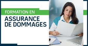 Formation en assurance de dommages (AEC)