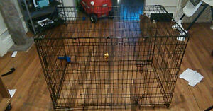 large or xl dog crate