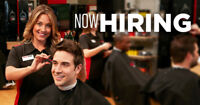 Seeking Licensed Hairstylists & Managers