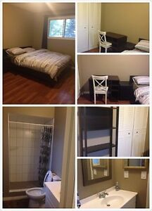 rundle/whitehorn single house near CTrain rooms for rent