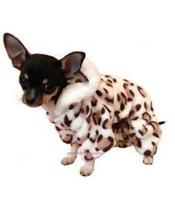 Good Fancy Dress Dog Outfit
