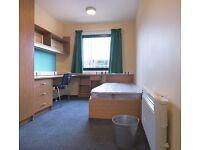 Single en-suite room, University of Essex, University Square Accommodation
