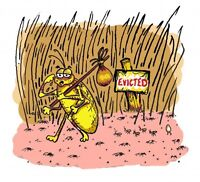 LICE BUSTER - Mobile Removal Service
