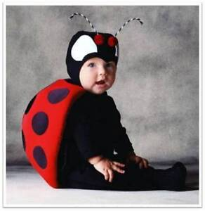 Brand new Tom Arma ladybug costume size 12-18 month Hammond Park Cockburn Area Preview