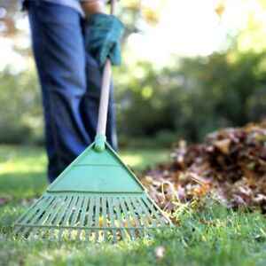Do you need a Fall Clean Up?, we can help !