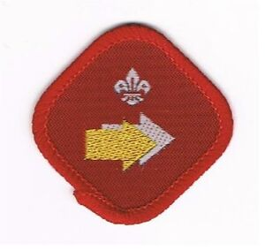 UK United Kingdom 80's -90's Scout /Cub Proficiency Award Badges - 30 Different