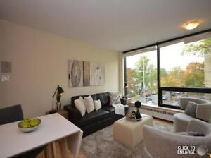Newly Renovated 1 Bedroom Unit Available Nov 1st