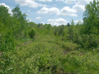 45 Acres on Finni Road in Wahnapitae