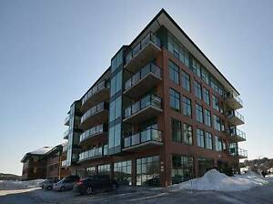 BEAUTIFUL 2 BED PLUS DEN CONDO IN DEWOLF PARK WITH WATERVIEW!
