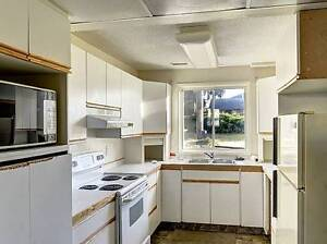 Bright Above Ground Suite(Downstairs) in House(2bed 1bath)