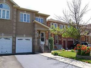 rent a basement in brampton apartments condos for sale or rent in