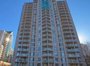 Beautifully renovated large 1000+ sq ft condo