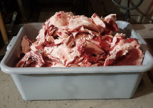 Fresh Beef Fat/Meat Trimmings