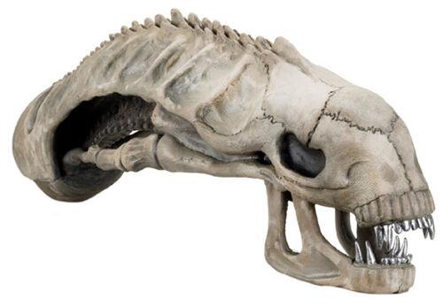"""ALIENS - 36"""" Xenomorph Skull Foam Replica (NECA) #NEW"""