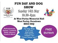 Staffie and Stray Rescue Family Fun Day