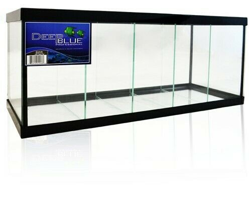 Betta, Aquarium, Glass, Breeding, Breeder, Betta tank, Shrimp, Tank, New