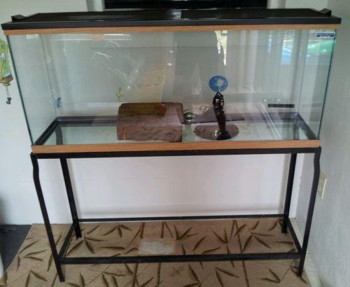 Gallon aquarium stand ebay for 29 gallon fish tank stand
