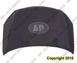Hood Sedan/Coupe Toyota Echo 2003-2005
