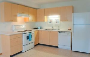 Beautiful 2 Bdrm Open Layout W/ Insuite Laundry!