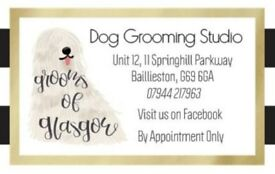 Eddies diy dogwash scotties dog grooming in leith edinburgh dog grooming and walking solutioingenieria Images