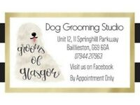 Dog grooming and walking