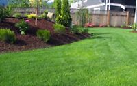 EXPERIENCED & AFFORDABLE LANDSCAPING-FREE ESTIMATES. CALL TODAY
